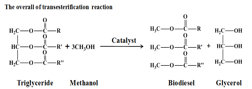 Study of Reaction